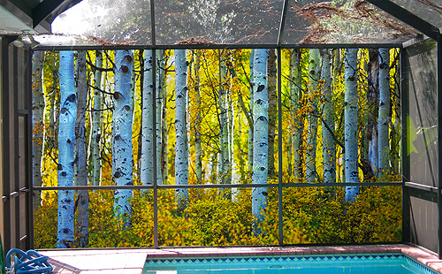 PATIO SCENE SCREEN (Yellow Forrest)